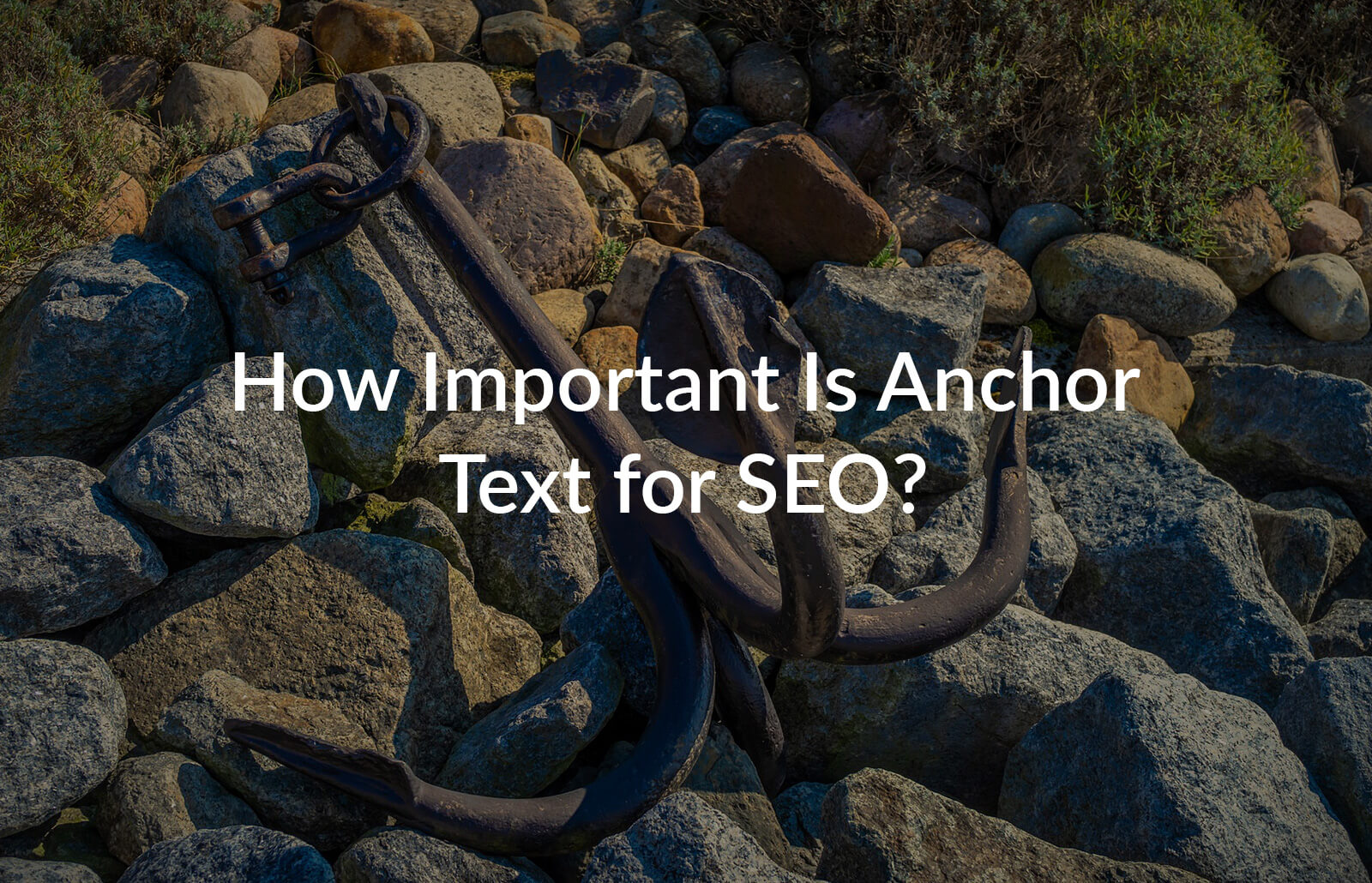How important is Anchor Text for SEO